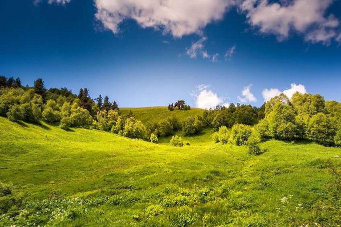landschap2.jpg