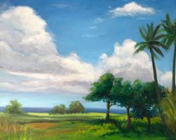 Tropical Land