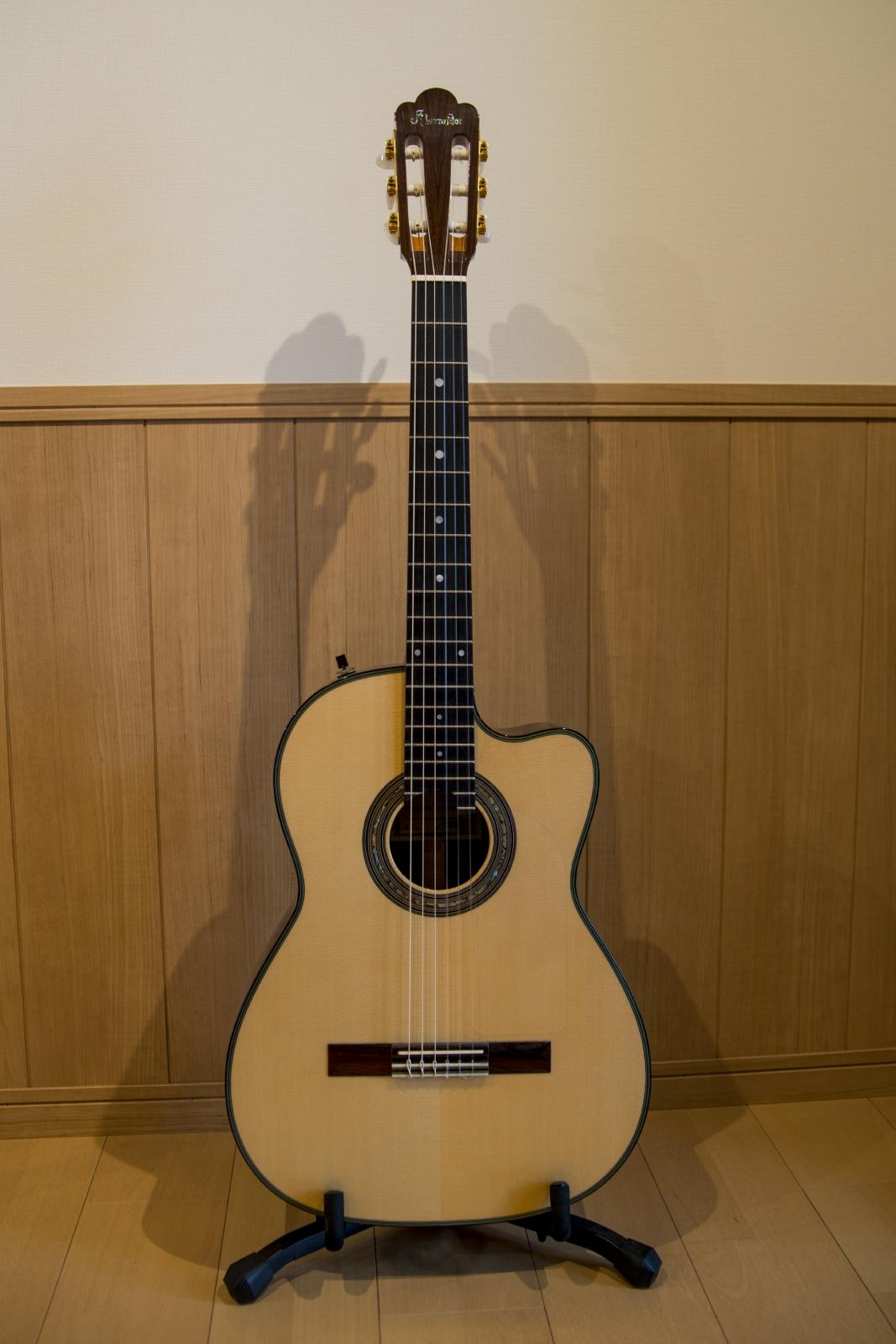 PGM ガットギター