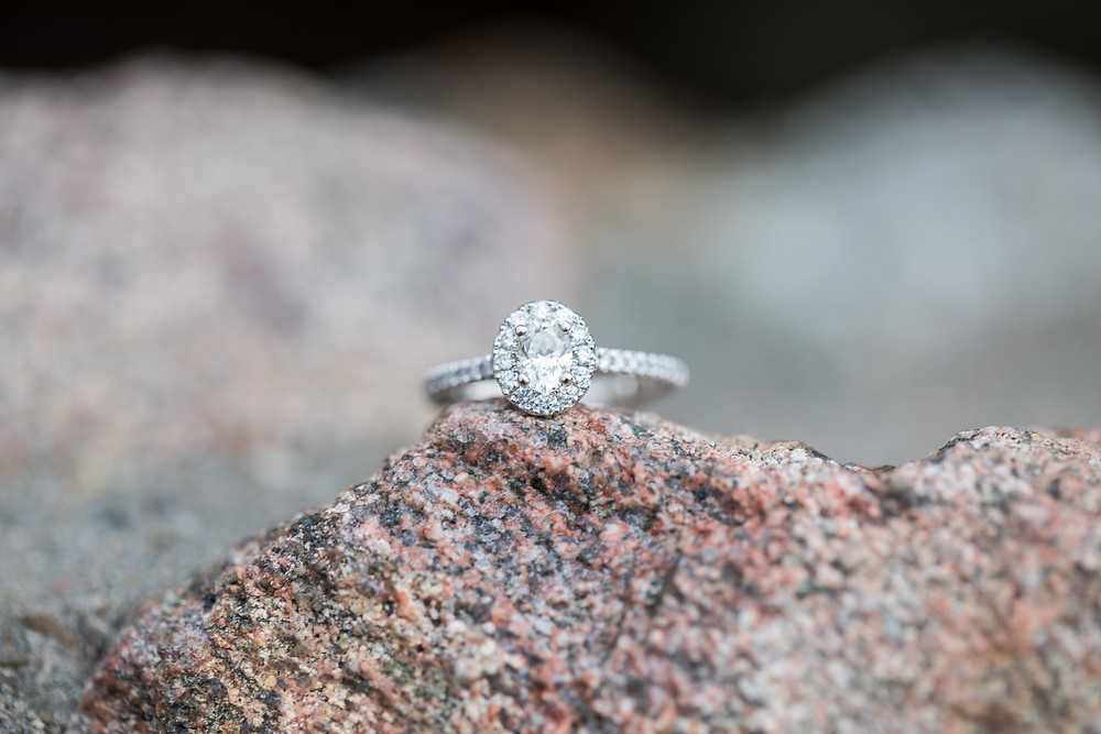 Michigan Engagement Photographer Engagement Ring