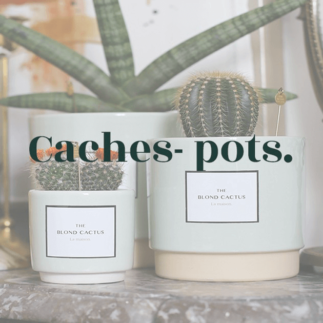 caches-pots.png