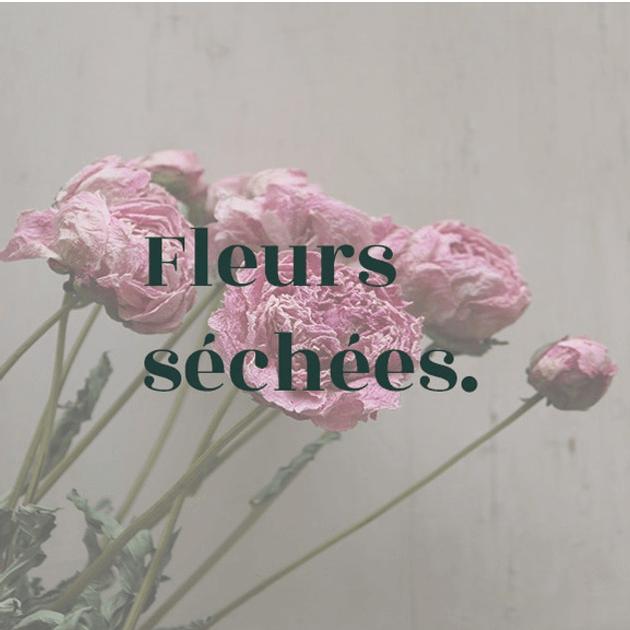 fleurs séchées.png