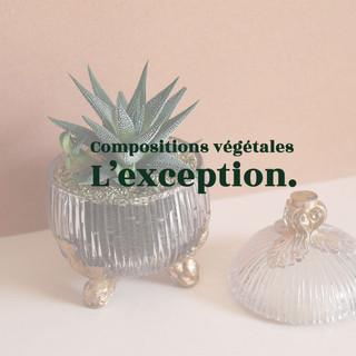 Compositions-vegetales-lexception.jpg