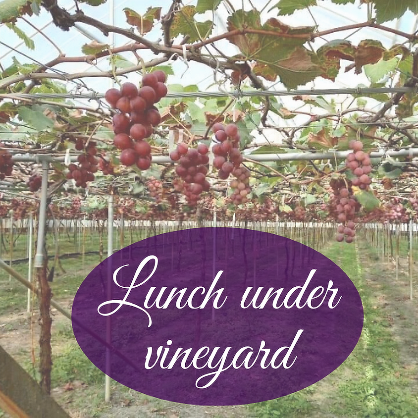 Vineyard Tour & Lunch
