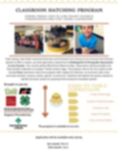 Hatching website flyer 2020.png
