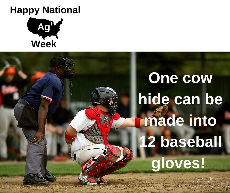 National ag week fun fact 1