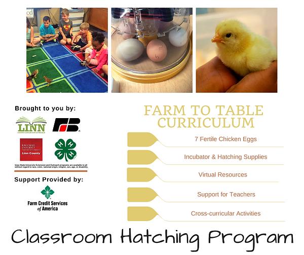 Classroom Hatching Program 2021 Facebook