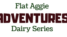 Flat Aggie Adventures Dairy Series