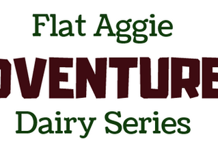 Flat Aggie Adventures Dairy Series