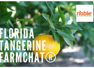 Growing Citrus in Florida