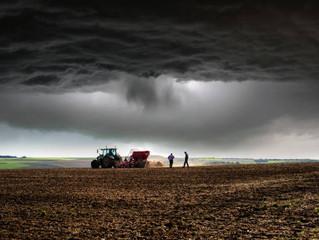 April Showers Bring... Good Crops?