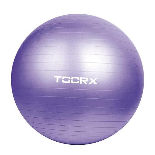 Gym ball diametro 75 Toorx