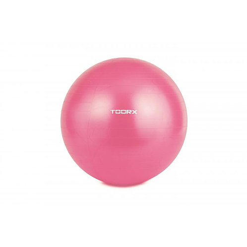 Gym ball diametro 55 Toorx