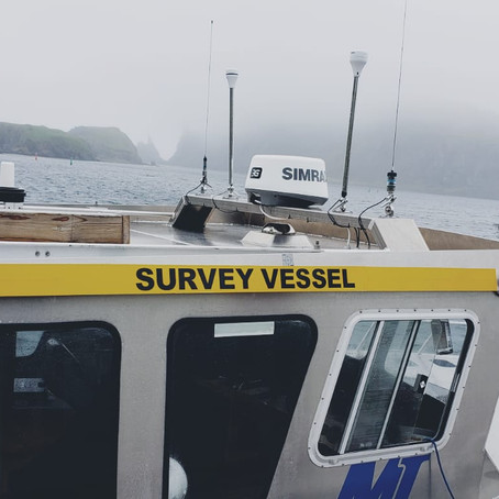 Summer fieldwork: Seafloor video surveys in Placentia Bay!