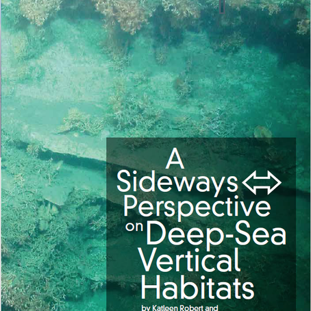 A sideways perspective on deep-sea vertical habitats
