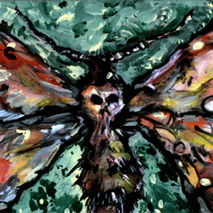 Deaths Head Moth by Erik Domenech.jpg