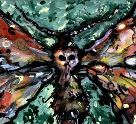 Deaths Head Moth by Erik Domenech.jpg