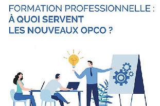 Le_rôle_des_OPCO.jpg