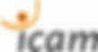 Logo ICAM.png