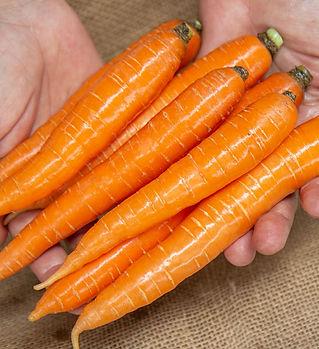 carrots-napoli-topless-1lb.jpg