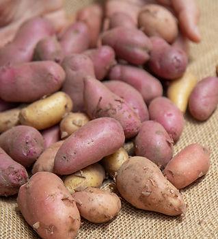 potato-fingerling-mix-2lb.jpg