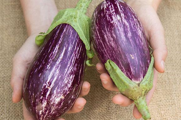Eggplant, Nubia