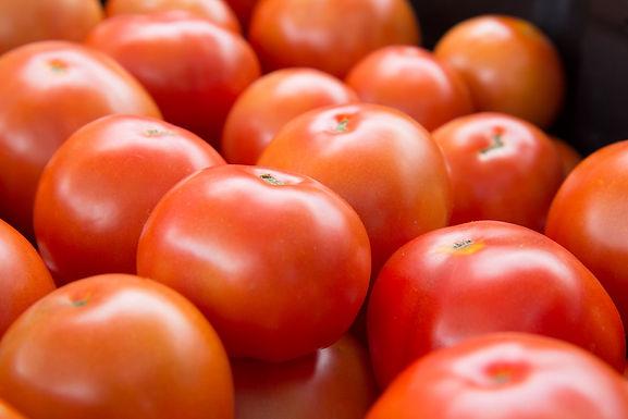 Tomatoes, Slicing