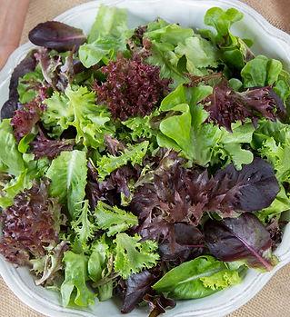 lettuce-mix-salanova.jpg