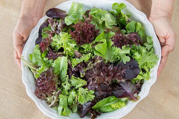 Lettuce Mix, Salanova