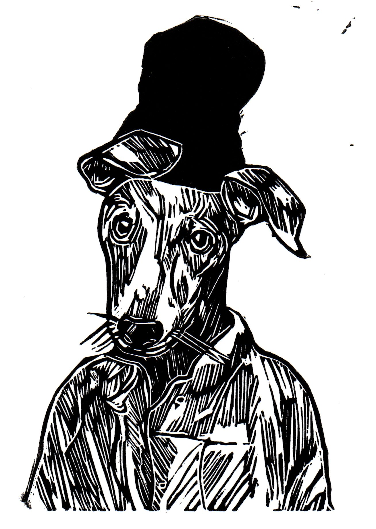 Beanie Greyhound