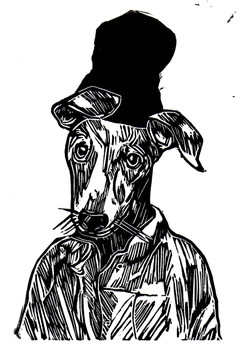 Beanie Greyhound