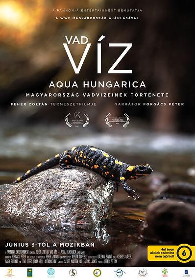 Vad-Viz-poster-B1-6V-FINAL-web.jpg