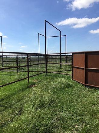 cattle pens.jpg