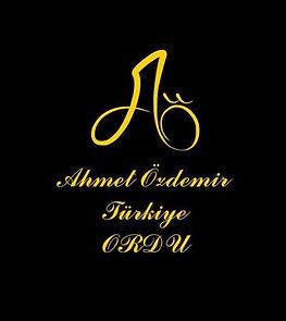 Ahmet%20ozdemir_edited.jpg
