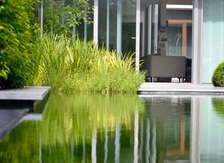 Nu ook eco-zwembaden 'puur natuur' bij Eenzwemvijver.be