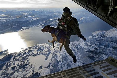 Navy Seal Dog Handler FF.jpeg