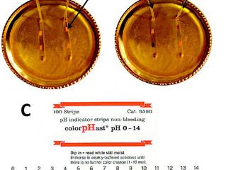 Microfluidics: the new home chemistry kit?