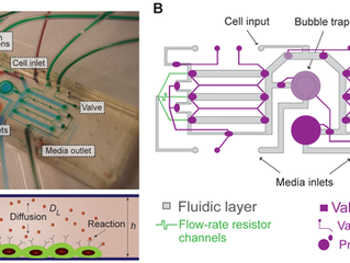 Microfluidics can control how stem cells communicate