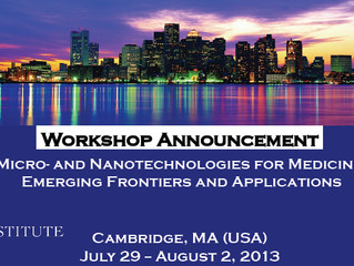 Workshop on Micro- and Nanotechnologies for Medicine July 29-Aug 2, 2013