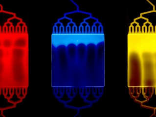 Microfluidic art from the Folch lab