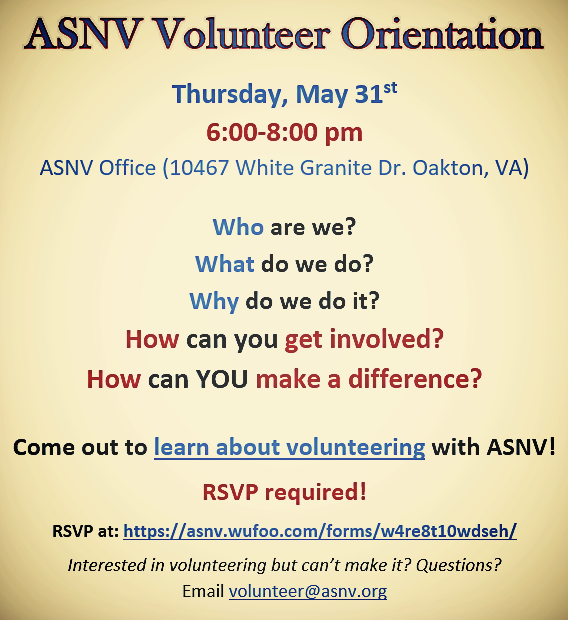RSVP now for Volunteer Orientation on May 31st from 6-8pm!