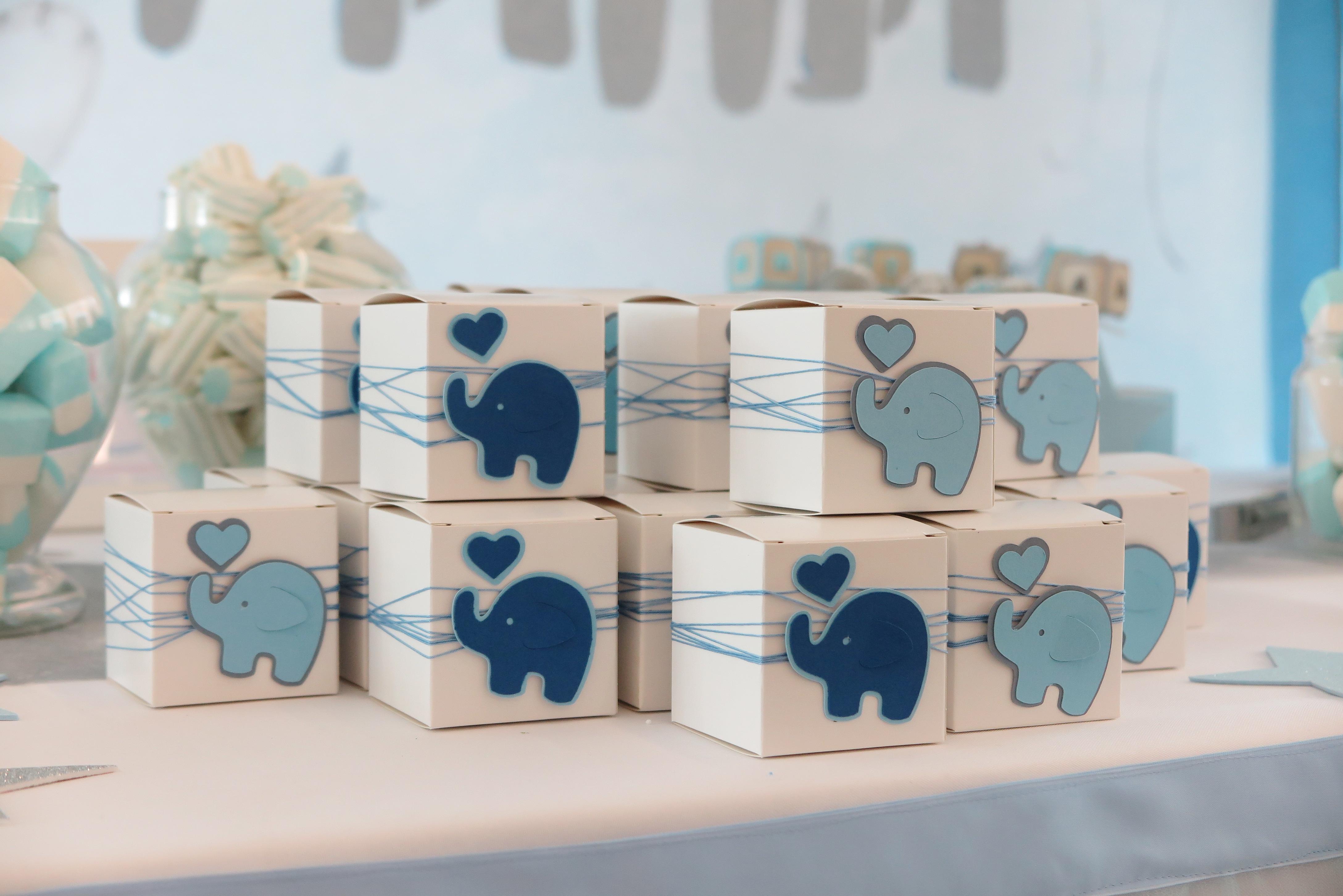 Battesimo Azzurro con Elefantini