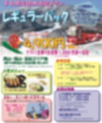 2020_jp_img014_レギュラーパック表.png