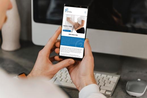 Webdesign für MikroTese // Mobile Version