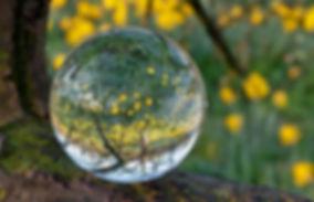 glaskugelastgabelnazissen-web_119522_by-
