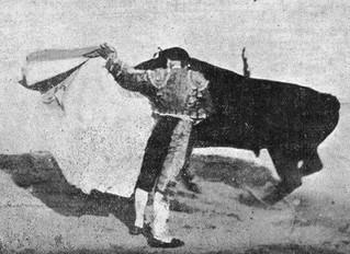 Historia de las novilladas en la Plaza de Toros de Toledo