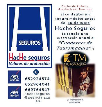 Hache_seguros.JPG