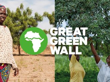 VERO MODA - GREAT GREEN WALL