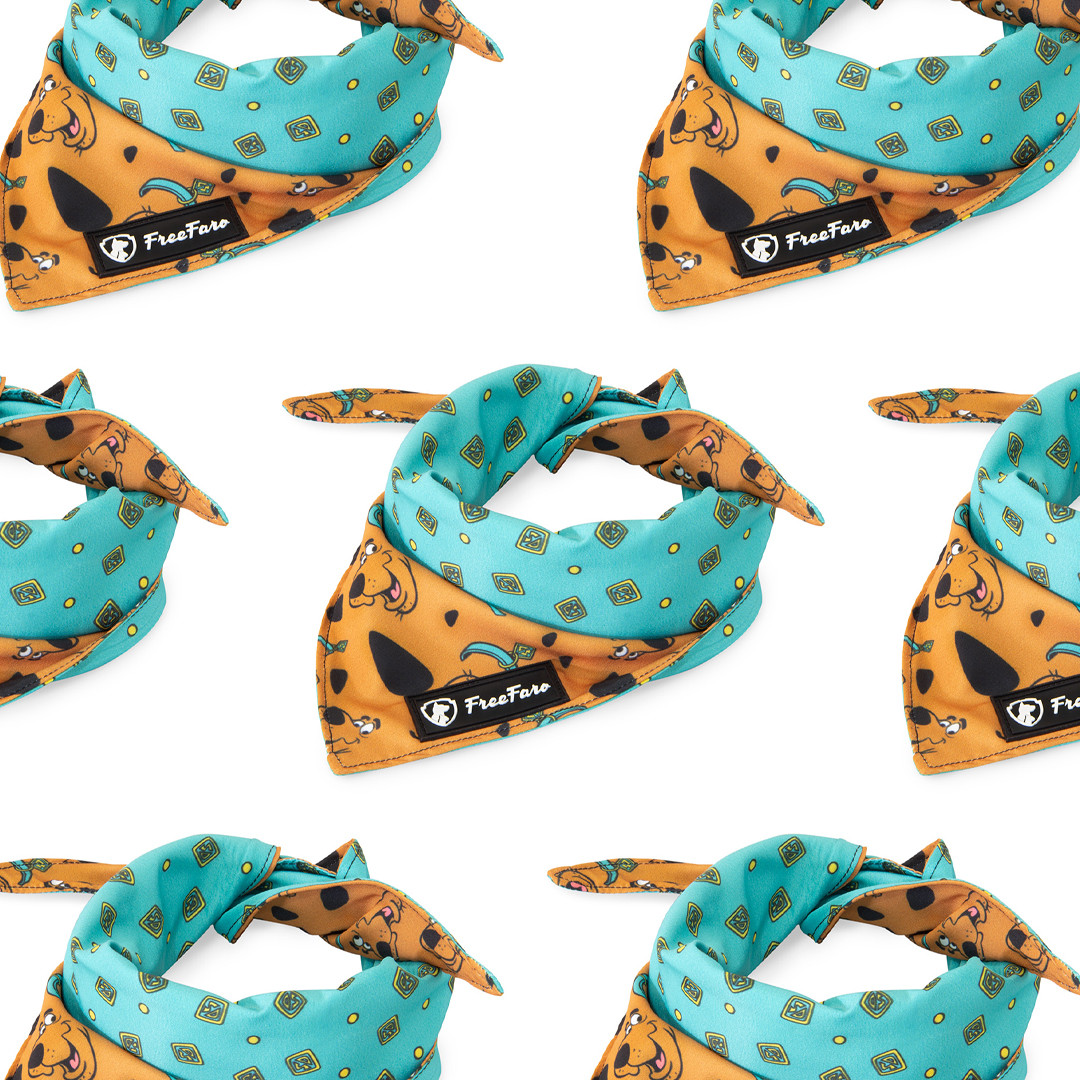 Bandana-para-cachoros-dog-pets-scooby-do