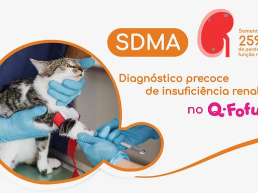 Diagnóstico precoce de Insuficiência Renal